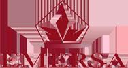 EMERSA Logo